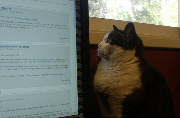 Maddie editing USSM